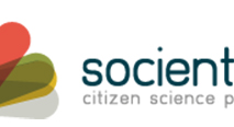 Our Urban Bees project is been selected by Socientize